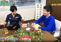 昨年末の阪神Cを大本線で的中させた阪神芝1400mの攻略法を大公開!/『亀谷敬正の血統の教室』