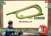 秋華賞は馬場状態で好走血統が大きく異なるレース! /『亀谷敬正の血統の教室』