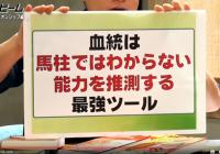 マイルCSにおけるディープインパクト産駒の取捨 /『亀谷敬正の血統の教室』