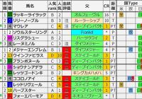 重賞レース過去5年ブラッドバイアス/阪神JF&カペラS&中日新聞杯