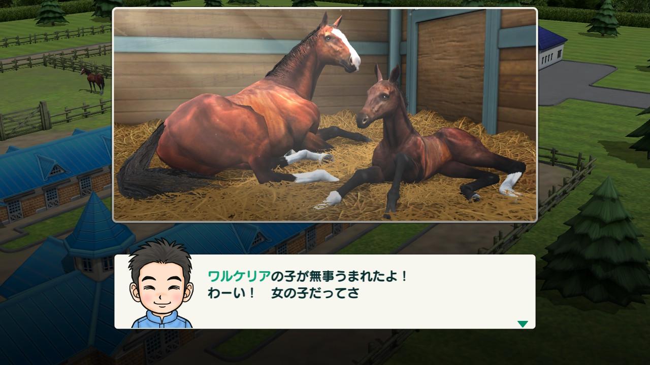 仔馬が誕生。牝馬産駒だった。