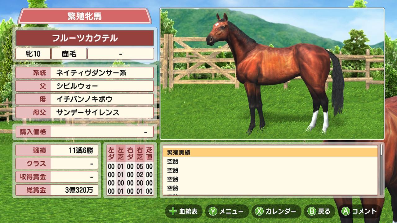 こちらがシビルウォー×イチバンノキボウの繁殖牝馬。まだ牧場で元気に過ごしています。現在10歳。