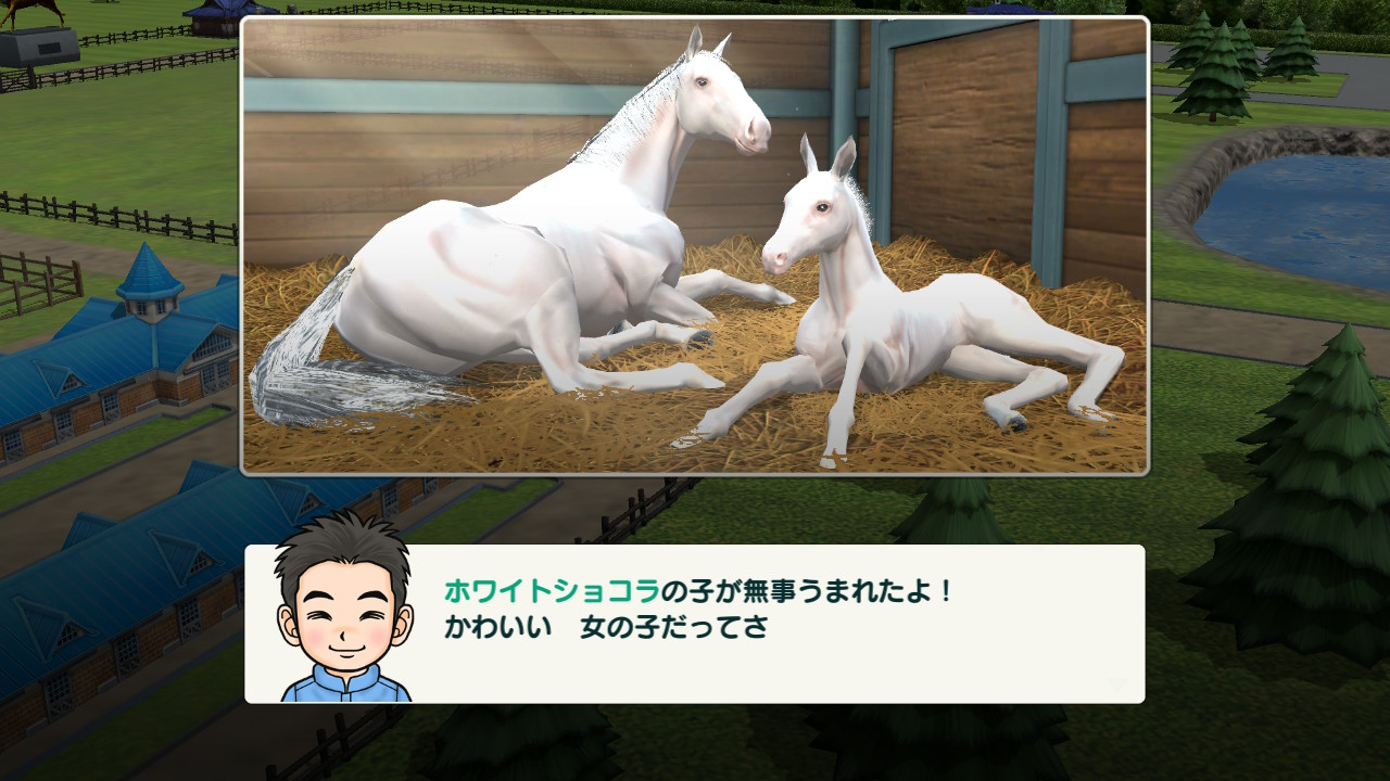 牝地蔵5段階目のおかげで、生まれてくる産駒はすべて牝馬に。完全な生み分けができるようになりました。なおかつ8割ほどが白毛です。