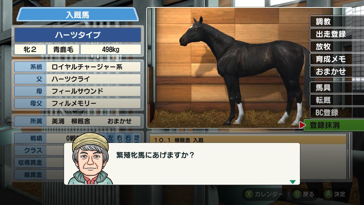 この牝馬に毎年種付けをし、牝馬を作って繁殖入りさせて繁殖牝馬を増やしていきます。