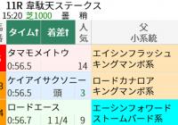 「新潟芝1000mで前走ダート組」該当馬の結果/編集部の競馬定点観測