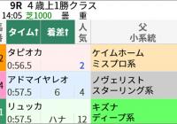 ダッシュ力とダート経験! 新潟芝1000m/今週末(5/8~5/9)の見どころ