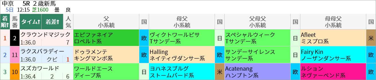 6/5(土)の中京5R・メイクデビュー中京(芝1600m)ではエピファネイア産駒のクラウンドマジックが7人気で1着でした。