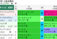 福島でロベルト系に注目! /今週末(7/10~7/11)の見どころ