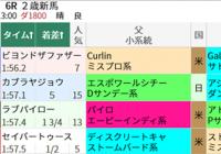 亀谷競馬サロンメンバーの新馬戦予想法/今週末(8/14~8/15)の見どころ