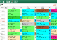 【無料公開】秋華賞 / 亀谷サロン限定公開中のスマート出馬表・次期バージョン